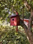 Beliebt bei den gefiederten Freunden ist das Södermalm-Rote Voglehäuschen – Foto: R.Geisler